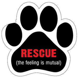 ai_Rescue, the feeling is mutual_paw_large