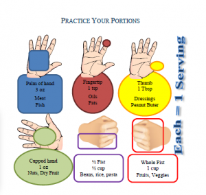 portion-sizes-using-hand-pic
